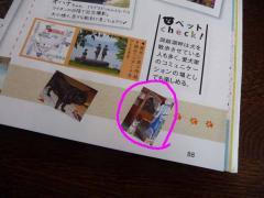 P1350821-AZUKII.jpg