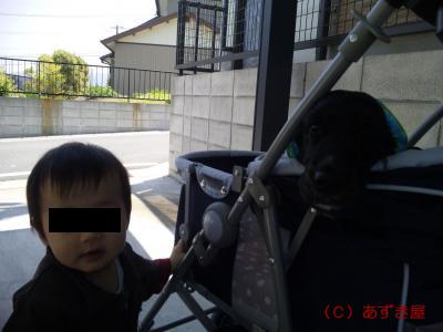 azuki495.jpg