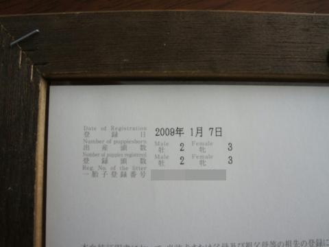 azuki585.jpg