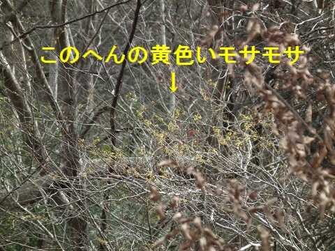 12feb22m001.jpg