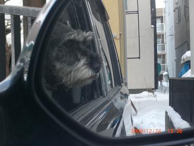 冬の窓から25