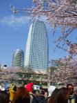 2011.04.10【浜岡原発をとめろ】 (17)