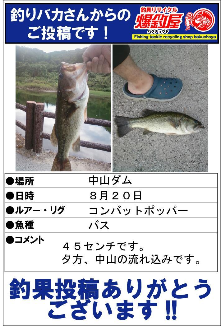 釣りバカさん20131001
