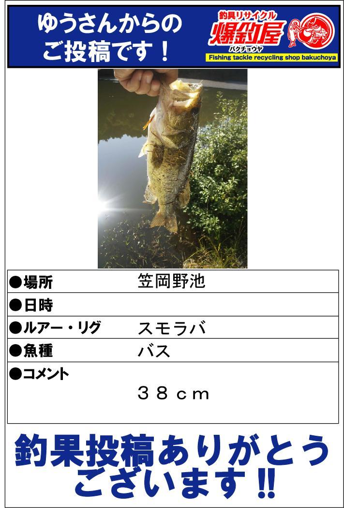 ゆうさん20131104