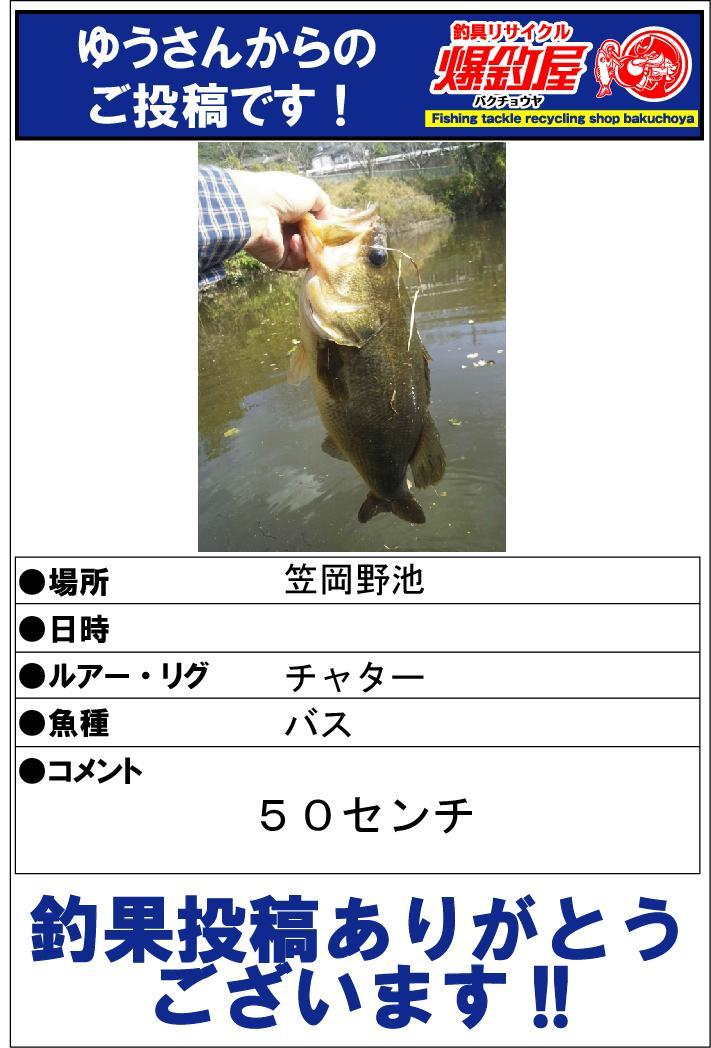 ゆうさん20131112