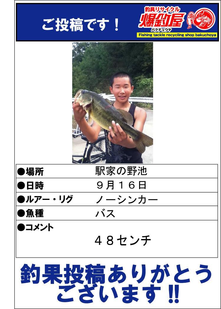 バスご投稿20131116