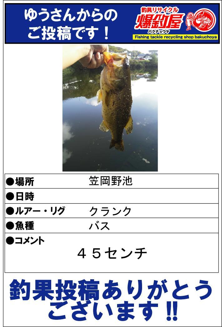 ゆうさん20131120
