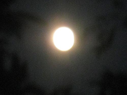 スペシャル満月