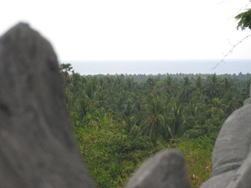 お寺の眺め