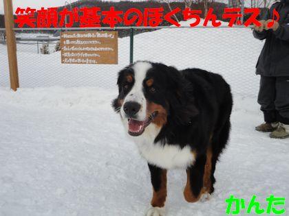DSC02839.jpg