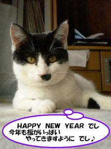 新年挨拶モカ