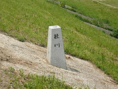 桂川(2)