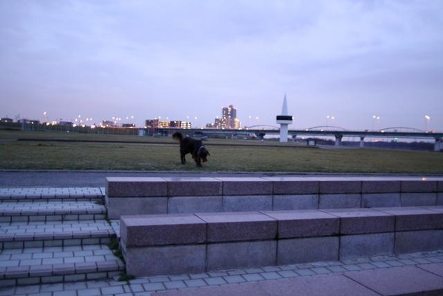 36IMG_7630.jpg