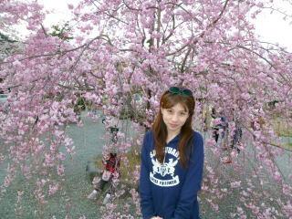 嵐山お花見4