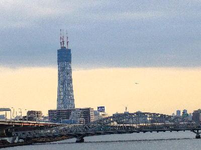 2010お正月汐入公園1