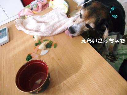 コピー ~ DSCF3958