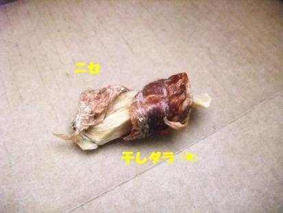 DSCF4041.jpg