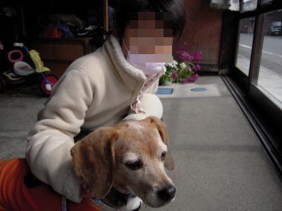 ai-2011-0320-jikka01.jpg