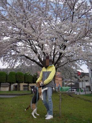 freeda-20110425-sanpo02.jpg