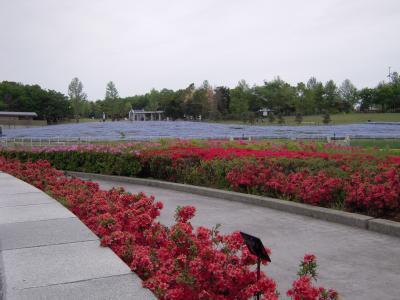 gardenpark-20110430.jpg