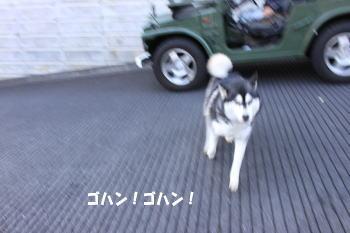 20091208_9.jpg