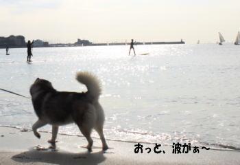 20091227_15.jpg