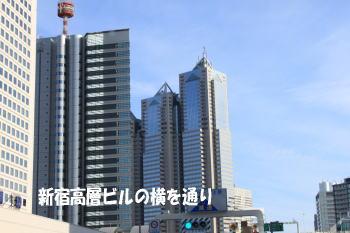 20091227_3.jpg