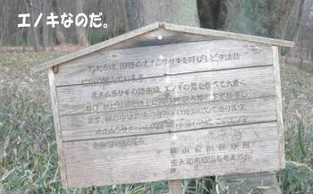 20100116_4.jpg