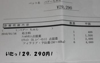 20100117_2.jpg