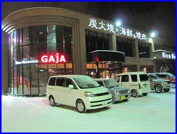 gaja-2009-12-21.jpg