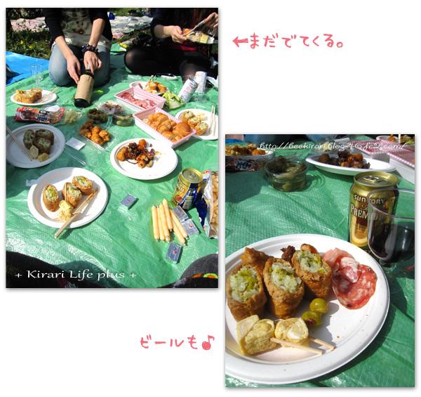 sakura2011_7.jpg