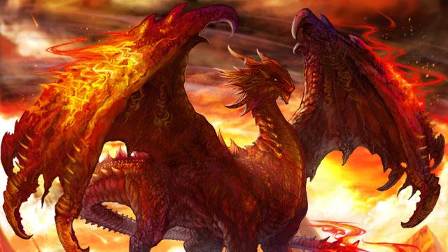 dragon_top.jpg
