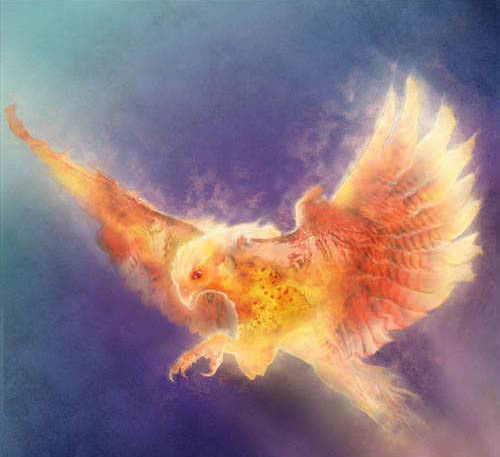 firebird3.jpg
