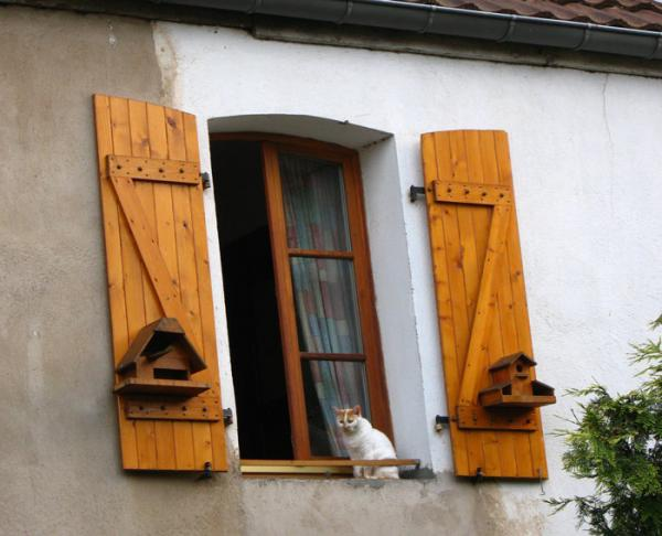 sainte_marie_window_cat_416.jpg