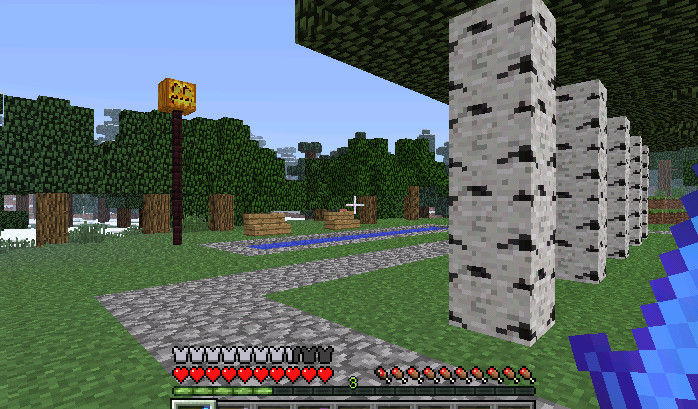 MineCraft016