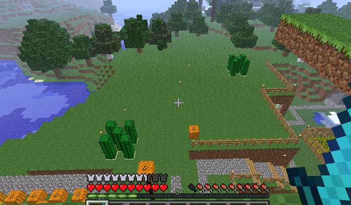 MineCraft018