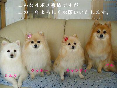 s-2010_0101トール作品倉庫0004