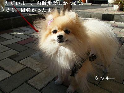 s-2010_0104トール作品倉庫0008