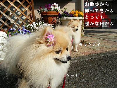 s-2010_0104トール作品倉庫0017