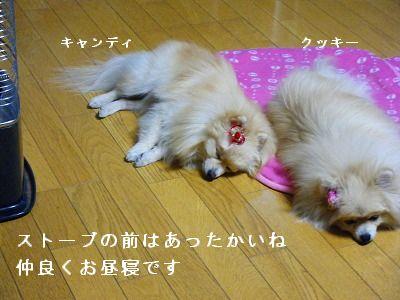s-2010_0108トール作品倉庫0002