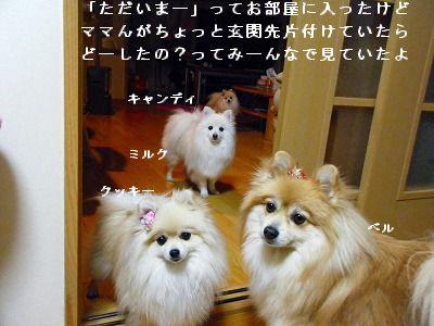 s-2010_0108トール作品倉庫0014