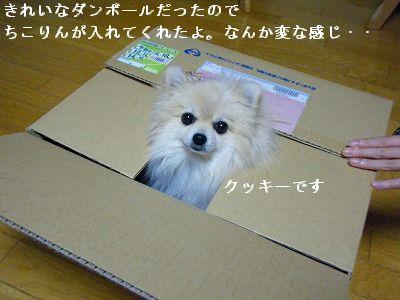 s-2010_0110トール作品倉庫0001