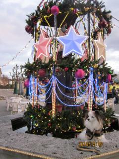 リトルのクリスマス
