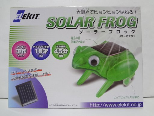 elso-ra-frogg.jpg