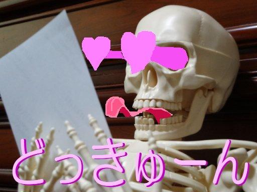 va-sa-nokoi2dayo5.jpg