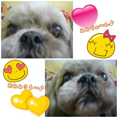 110329_mimi_happy_01.jpg