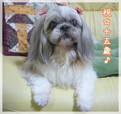 110329_mimi_happy_03.jpg