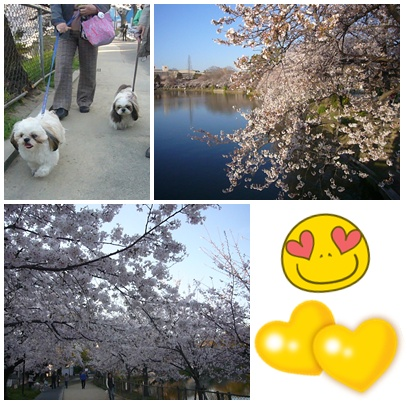 110406_mandai_03.jpg