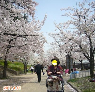 110411_tenma_01.jpg