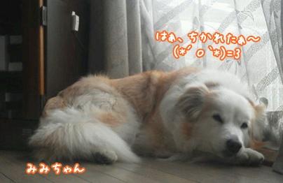 110507_tqc_04.jpg